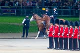Trooping the Colour 2014. Horse Guards Parade, Westminster, London SW1A,  United Kingdom, on 14 June 2014 at 10:30, image #176