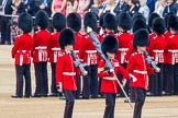 Trooping the Colour 2014. Horse Guards Parade, Westminster, London SW1A,  United Kingdom, on 14 June 2014 at 10:30, image #179