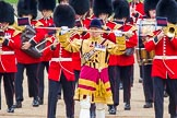 Trooping the Colour 2014. Horse Guards Parade, Westminster, London SW1A,  United Kingdom, on 14 June 2014 at 10:30, image #181