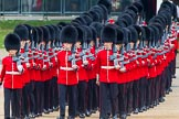 Trooping the Colour 2014. Horse Guards Parade, Westminster, London SW1A,  United Kingdom, on 14 June 2014 at 10:30, image #184
