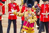 Trooping the Colour 2014. Horse Guards Parade, Westminster, London SW1A,  United Kingdom, on 14 June 2014 at 10:31, image #187