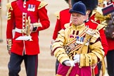 Trooping the Colour 2014. Horse Guards Parade, Westminster, London SW1A,  United Kingdom, on 14 June 2014 at 10:31, image #188