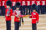 Trooping the Colour 2014. Horse Guards Parade, Westminster, London SW1A,  United Kingdom, on 14 June 2014 at 10:32, image #193