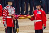 Trooping the Colour 2014. Horse Guards Parade, Westminster, London SW1A,  United Kingdom, on 14 June 2014 at 10:32, image #194