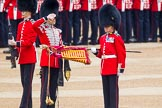 Trooping the Colour 2014. Horse Guards Parade, Westminster, London SW1A,  United Kingdom, on 14 June 2014 at 10:32, image #195