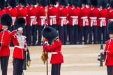 Trooping the Colour 2014. Horse Guards Parade, Westminster, London SW1A,  United Kingdom, on 14 June 2014 at 10:32, image #199
