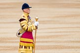 Trooping the Colour 2014. Horse Guards Parade, Westminster, London SW1A,  United Kingdom, on 14 June 2014 at 10:33, image #209