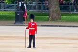 Trooping the Colour 2014. Horse Guards Parade, Westminster, London SW1A,  United Kingdom, on 14 June 2014 at 10:34, image #212
