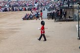 Trooping the Colour 2014. Horse Guards Parade, Westminster, London SW1A,  United Kingdom, on 14 June 2014 at 10:35, image #218