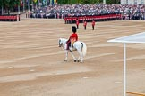 Trooping the Colour 2014. Horse Guards Parade, Westminster, London SW1A,  United Kingdom, on 14 June 2014 at 10:35, image #219