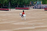 Trooping the Colour 2014. Horse Guards Parade, Westminster, London SW1A,  United Kingdom, on 14 June 2014 at 10:35, image #221