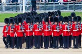 Trooping the Colour 2014. Horse Guards Parade, Westminster, London SW1A,  United Kingdom, on 14 June 2014 at 10:36, image #222