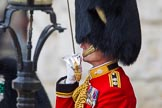 Trooping the Colour 2014. Horse Guards Parade, Westminster, London SW1A,  United Kingdom, on 14 June 2014 at 10:40, image #224