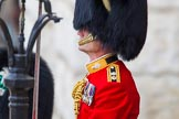 Trooping the Colour 2014. Horse Guards Parade, Westminster, London SW1A,  United Kingdom, on 14 June 2014 at 10:40, image #225