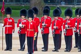 Trooping the Colour 2014. Horse Guards Parade, Westminster, London SW1A,  United Kingdom, on 14 June 2014 at 10:51, image #295