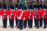 Trooping the Colour 2014. Horse Guards Parade, Westminster, London SW1A,  United Kingdom, on 14 June 2014 at 10:51, image #296