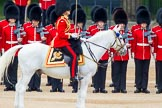 Trooping the Colour 2014. Horse Guards Parade, Westminster, London SW1A,  United Kingdom, on 14 June 2014 at 10:51, image #297