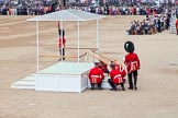 Trooping the Colour 2014. Horse Guards Parade, Westminster, London SW1A,  United Kingdom, on 14 June 2014 at 10:54, image #303