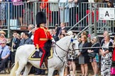 Trooping the Colour 2014. Horse Guards Parade, Westminster, London SW1A,  United Kingdom, on 14 June 2014 at 10:56, image #316