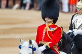Trooping the Colour 2014. Horse Guards Parade, Westminster, London SW1A,  United Kingdom, on 14 June 2014 at 10:57, image #324