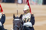 Trooping the Colour 2014. Horse Guards Parade, Westminster, London SW1A,  United Kingdom, on 14 June 2014 at 10:57, image #327