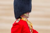 Trooping the Colour 2014. Horse Guards Parade, Westminster, London SW1A,  United Kingdom, on 14 June 2014 at 10:58, image #337
