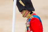 Trooping the Colour 2014. Horse Guards Parade, Westminster, London SW1A,  United Kingdom, on 14 June 2014 at 11:00, image #370