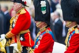Trooping the Colour 2014. Horse Guards Parade, Westminster, London SW1A,  United Kingdom, on 14 June 2014 at 11:01, image #381
