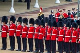 Trooping the Colour 2014. Horse Guards Parade, Westminster, London SW1A,  United Kingdom, on 14 June 2014 at 11:01, image #382