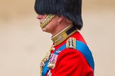 Trooping the Colour 2014. Horse Guards Parade, Westminster, London SW1A,  United Kingdom, on 14 June 2014 at 11:02, image #387