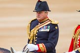 Trooping the Colour 2014. Horse Guards Parade, Westminster, London SW1A,  United Kingdom, on 14 June 2014 at 11:02, image #389