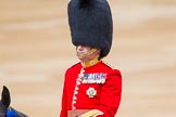 Trooping the Colour 2014. Horse Guards Parade, Westminster, London SW1A,  United Kingdom, on 14 June 2014 at 11:02, image #391