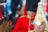 Trooping the Colour 2014. Horse Guards Parade, Westminster, London SW1A,  United Kingdom, on 14 June 2014 at 11:03, image #402