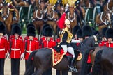 Trooping the Colour 2014. Horse Guards Parade, Westminster, London SW1A,  United Kingdom, on 14 June 2014 at 11:04, image #407
