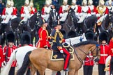 Trooping the Colour 2014. Horse Guards Parade, Westminster, London SW1A,  United Kingdom, on 14 June 2014 at 11:04, image #410