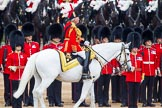 Trooping the Colour 2014. Horse Guards Parade, Westminster, London SW1A,  United Kingdom, on 14 June 2014 at 11:04, image #411