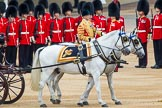 Trooping the Colour 2014. Horse Guards Parade, Westminster, London SW1A,  United Kingdom, on 14 June 2014 at 11:04, image #412