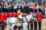 Trooping the Colour 2014. Horse Guards Parade, Westminster, London SW1A,  United Kingdom, on 14 June 2014 at 11:04, image #414