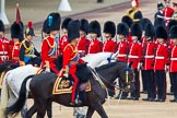 Trooping the Colour 2014. Horse Guards Parade, Westminster, London SW1A,  United Kingdom, on 14 June 2014 at 11:04, image #415