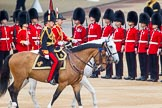 Trooping the Colour 2014. Horse Guards Parade, Westminster, London SW1A,  United Kingdom, on 14 June 2014 at 11:05, image #419