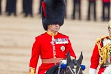 Trooping the Colour 2014. Horse Guards Parade, Westminster, London SW1A,  United Kingdom, on 14 June 2014 at 11:08, image #439