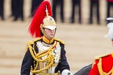 Trooping the Colour 2014. Horse Guards Parade, Westminster, London SW1A,  United Kingdom, on 14 June 2014 at 11:08, image #444