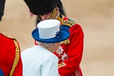 Trooping the Colour 2014. Horse Guards Parade, Westminster, London SW1A,  United Kingdom, on 14 June 2014 at 11:08, image #448