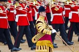 Trooping the Colour 2014. Horse Guards Parade, Westminster, London SW1A,  United Kingdom, on 14 June 2014 at 11:09, image #453