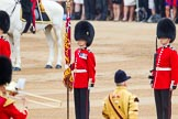 Trooping the Colour 2014. Horse Guards Parade, Westminster, London SW1A,  United Kingdom, on 14 June 2014 at 11:11, image #456