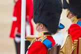 Trooping the Colour 2014. Horse Guards Parade, Westminster, London SW1A,  United Kingdom, on 14 June 2014 at 11:11, image #457