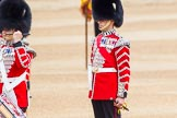 Trooping the Colour 2014. Horse Guards Parade, Westminster, London SW1A,  United Kingdom, on 14 June 2014 at 11:12, image #460