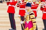 Trooping the Colour 2014. Horse Guards Parade, Westminster, London SW1A,  United Kingdom, on 14 June 2014 at 11:13, image #466
