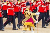 Trooping the Colour 2014. Horse Guards Parade, Westminster, London SW1A,  United Kingdom, on 14 June 2014 at 11:14, image #476