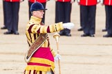 Trooping the Colour 2014. Horse Guards Parade, Westminster, London SW1A,  United Kingdom, on 14 June 2014 at 11:14, image #479